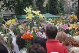Відпуст в парафії св. Антонія у Львові