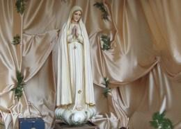 Час відвідин фігури Матері Божої Фатімської
