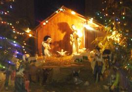 Різдвяні канікули у Борисполі
